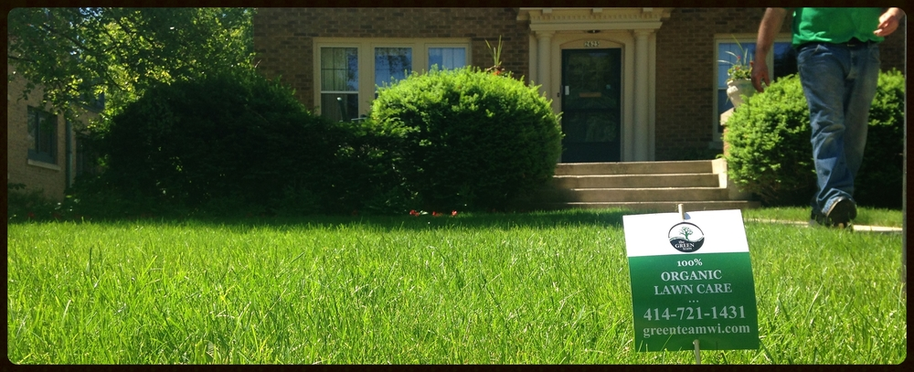 natural lawn care the green team of wi