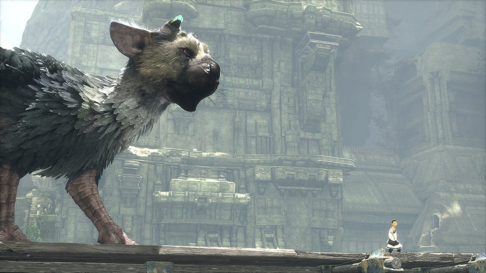 Trico's animations bring a lot of life and heart to this game.