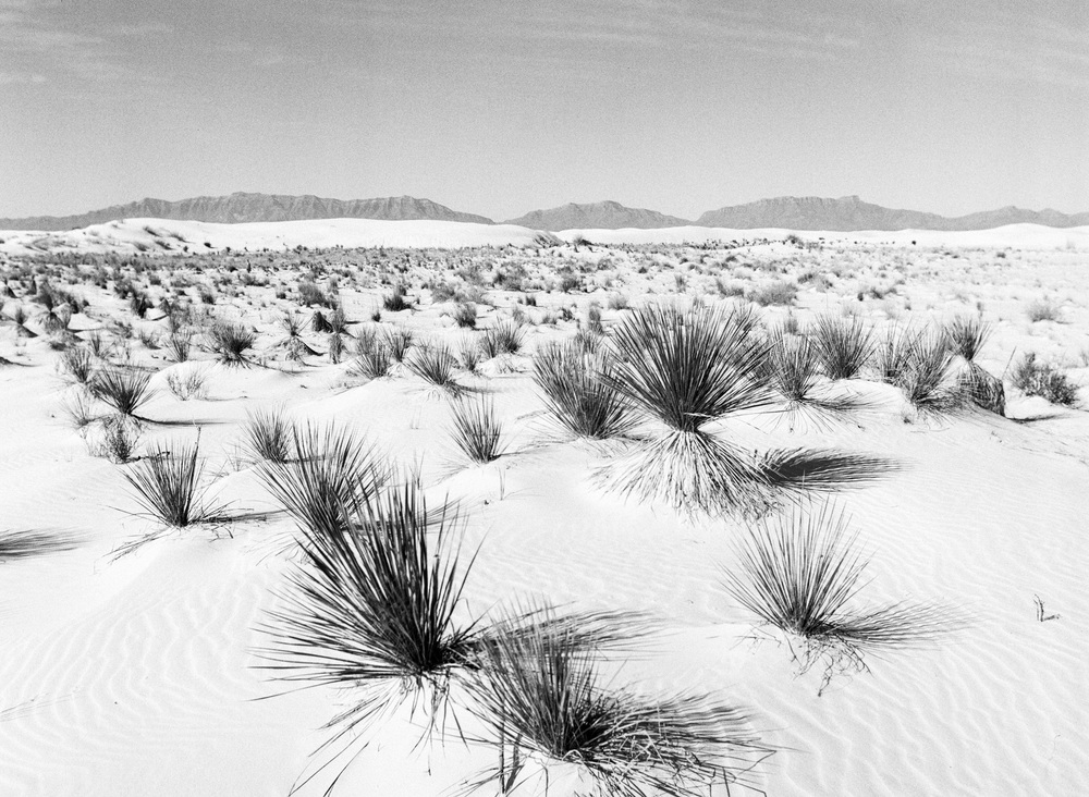 andrewwhite-photo-redbull-losangeles-1.JPG
