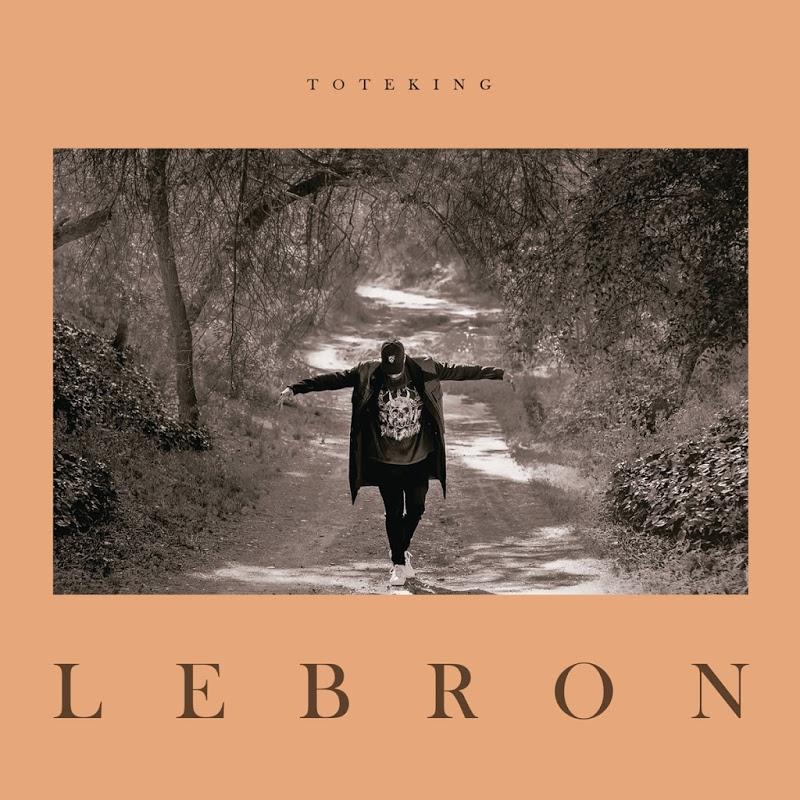 Toteking-Lebron-49840_front.jpg