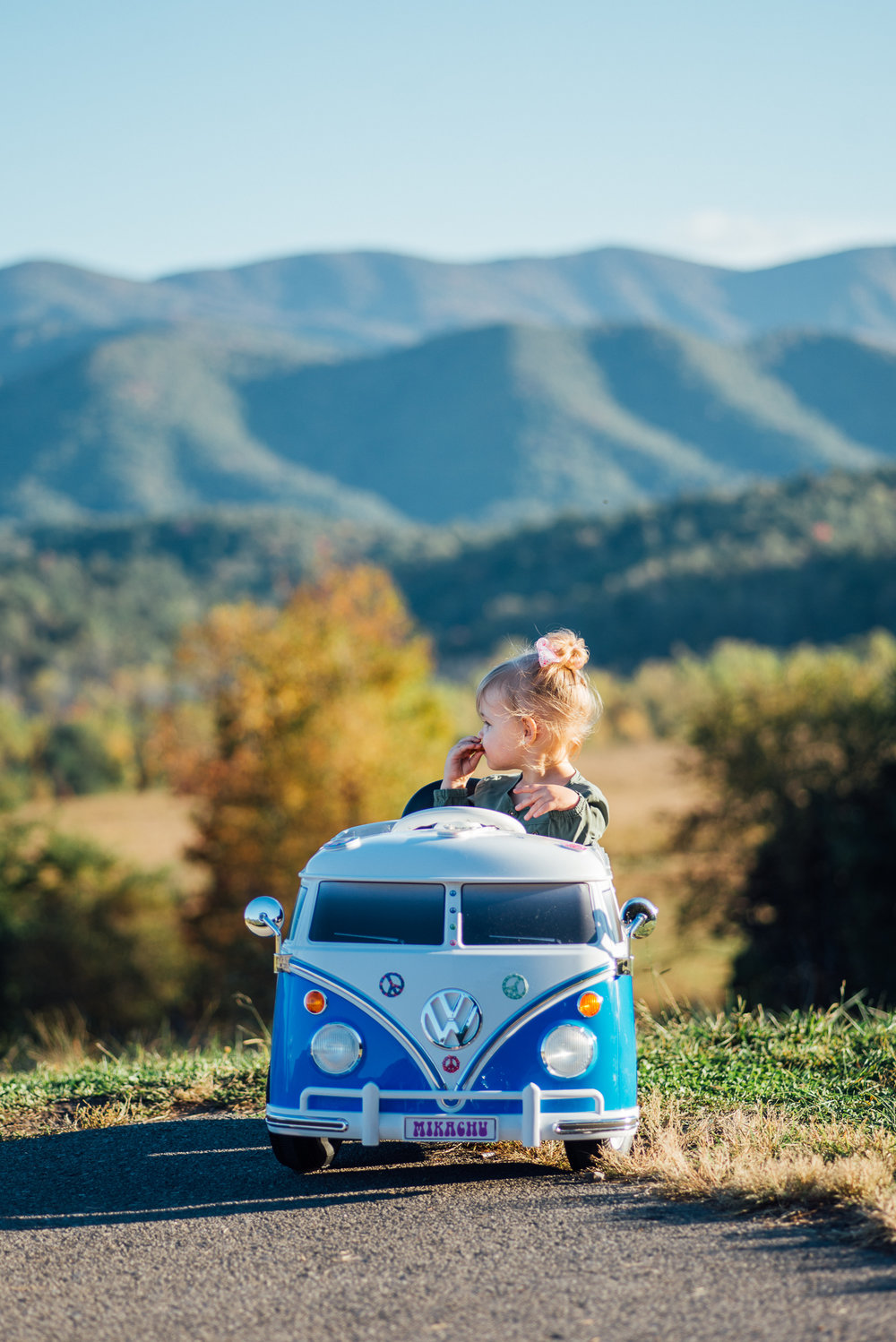 Mika's second birthday photos in cades cove with vw bus