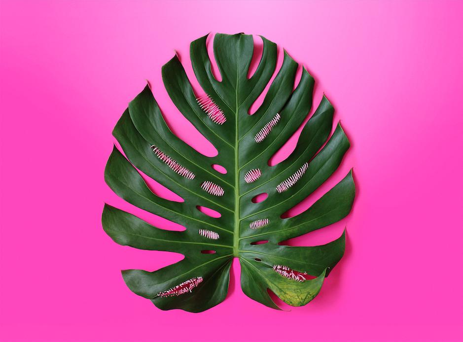 juliana curi - pink intervention 1