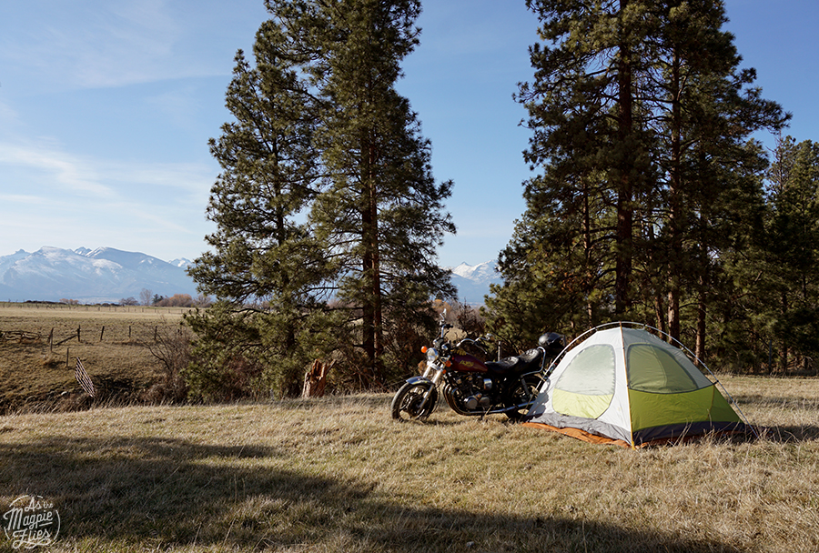 The pasture we'll be camping in for   Rocky MTN Roll   July 29-31, 2016.  MORE INFO.