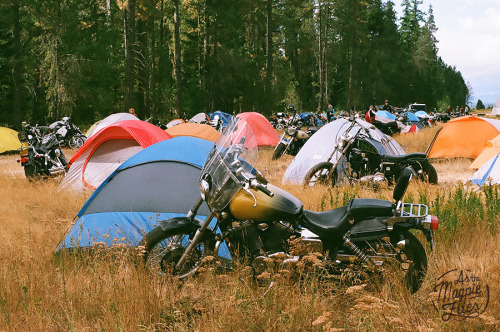 My corner of home in the field, featuring my cheap Walmart Tent and Hephaestus, my 2005 Honda Shadow 750.