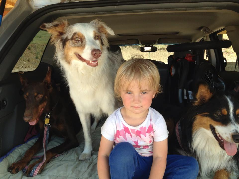 dogs and humans_dogs and kids_anthromorphism_people treating animals as humans