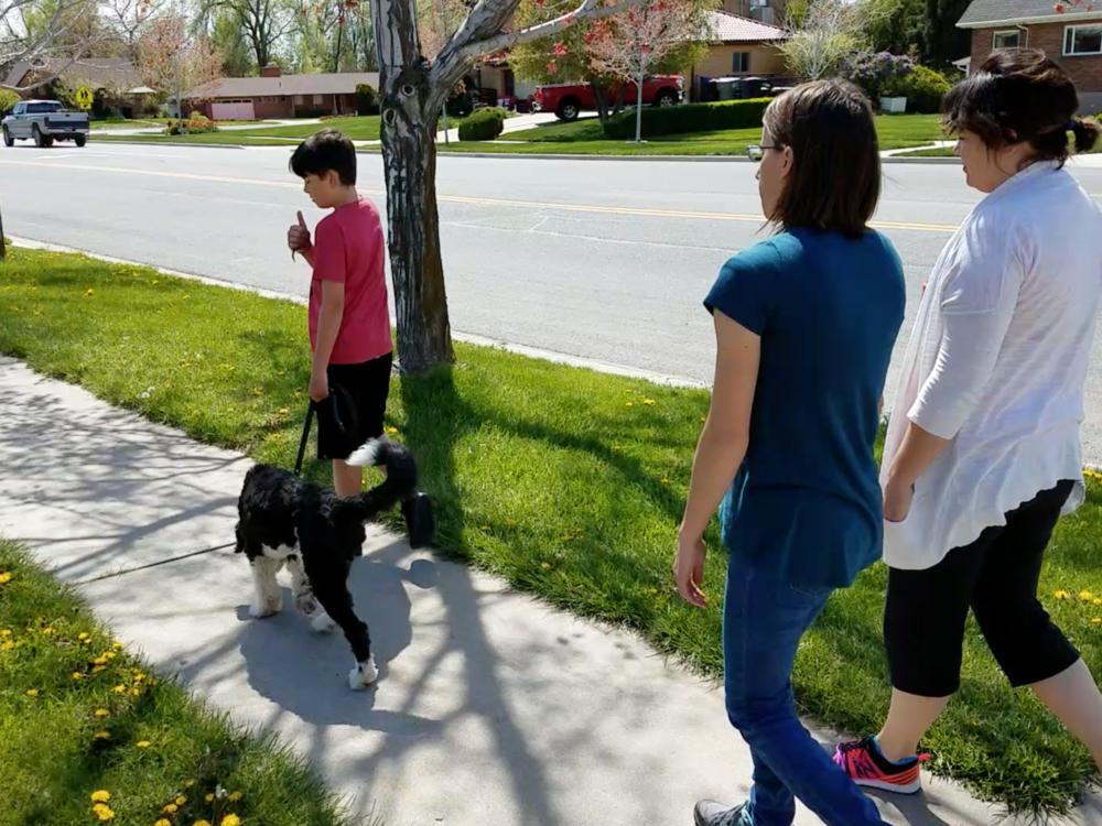 family dog training_utah county