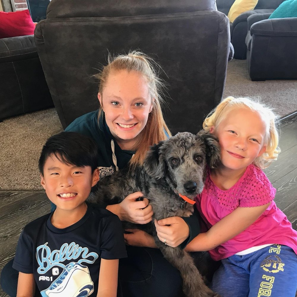 Syl's family enlisted the help of another training company with very unsatisfactory results. Fortunately, they put their faith and trust in Bakers Acres and now Syl is helping her family teach her new baby sister everything Syl learned from Puppy Pro lessons.