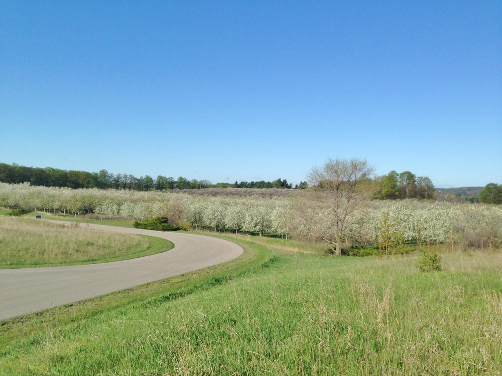 760+S+Village+View+Suttons+Bay+Leelanau+County+Waterview+vacant+lot+for+sale+by+Oltersdorf+Realty+LLC+Leelanau+Realtors+18 (2).jpg