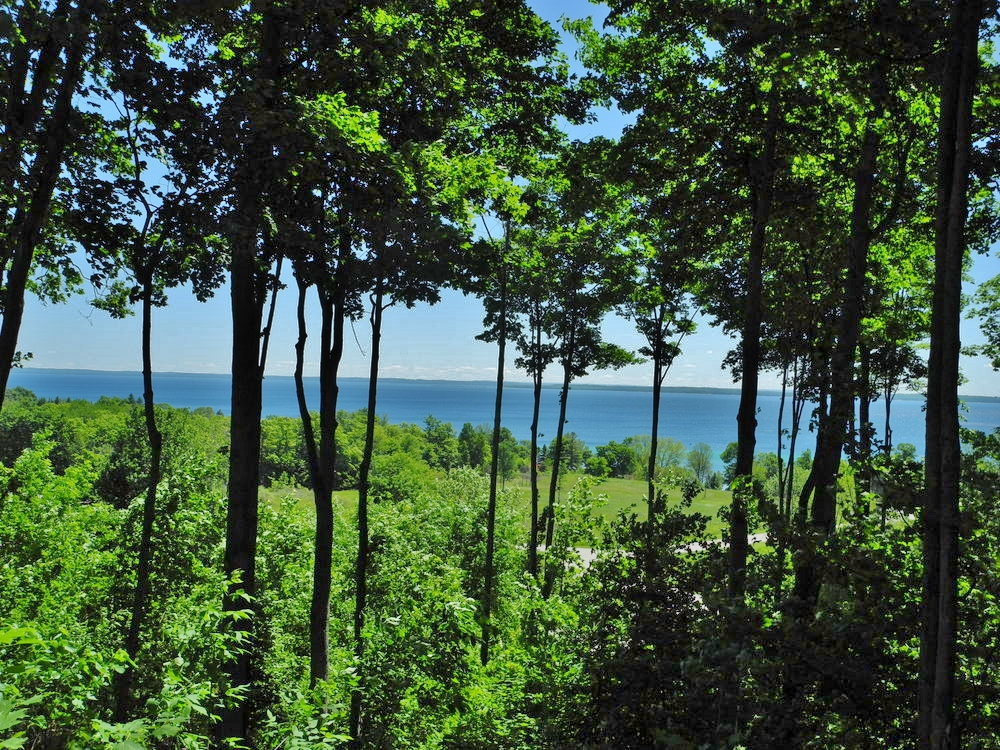 11638 E Belanger Woods Drive, Suttons Bay, MI, Leelanau County vacant land with water views of Grand traverse Bay, for sale by Oltersdorf Realty LLC, Leelanau County Realtors Vicky & Jonathan Oltersdorf (2).JPG