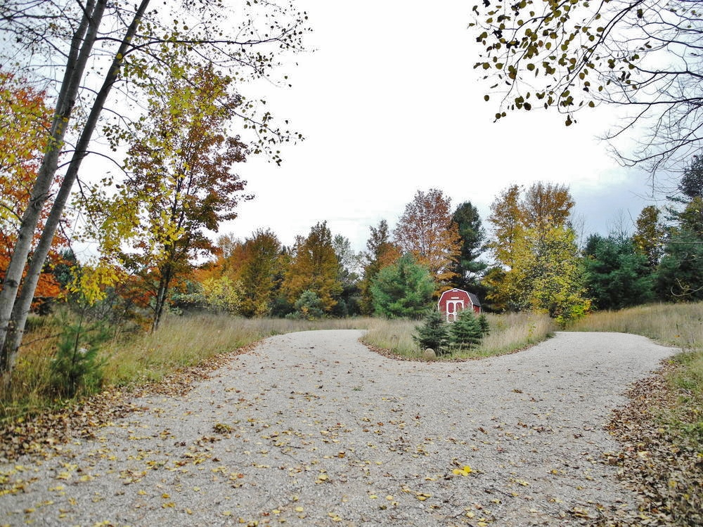 8350 E Horn Road, Lake Leelanau Vacant land for sale near Suttons Bay by Oltersdorf Realty LLC Realtors (2).JPG