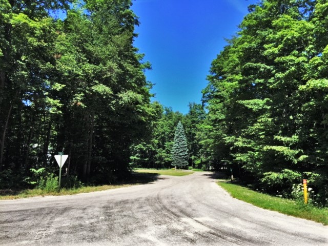 S Linden Court, Cedar, Leelanau County, vacant building site for sale by Oltersdorf Realty LLC (2).JPG