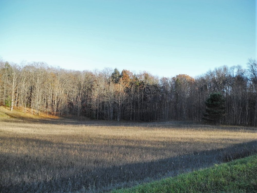 S Maple Valley Road, Suttons Bay, MI – 10.00 Acre Vacant Parcel  for sale by Oltersdorf Realty LLC (1).JPG