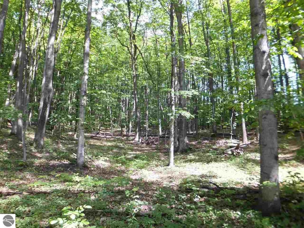 10 Acres on N Manitou Trail located just west of Northport, Leelanau County - Sold by Oltersdorf Realty LLC (3).JPG