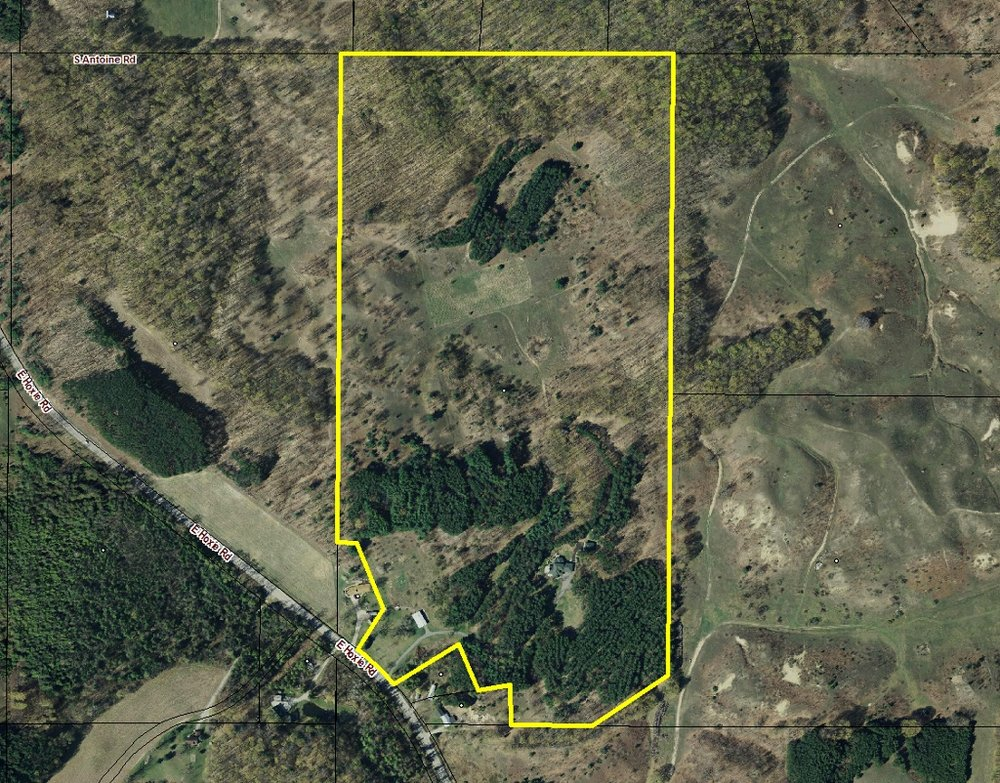 5675 E Hoxie Road, Cedar, Leelanau County Estate Size Parcel sold by Jonathan Oltersdorf and Oltersdorf Realty LLC (3).jpg