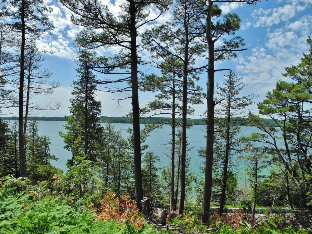 3911 N Hareld Drive, Lake Leelanau, MI – Vacant Parcel with Elevated Sunset North Lake Leelanau Views (1).JPG