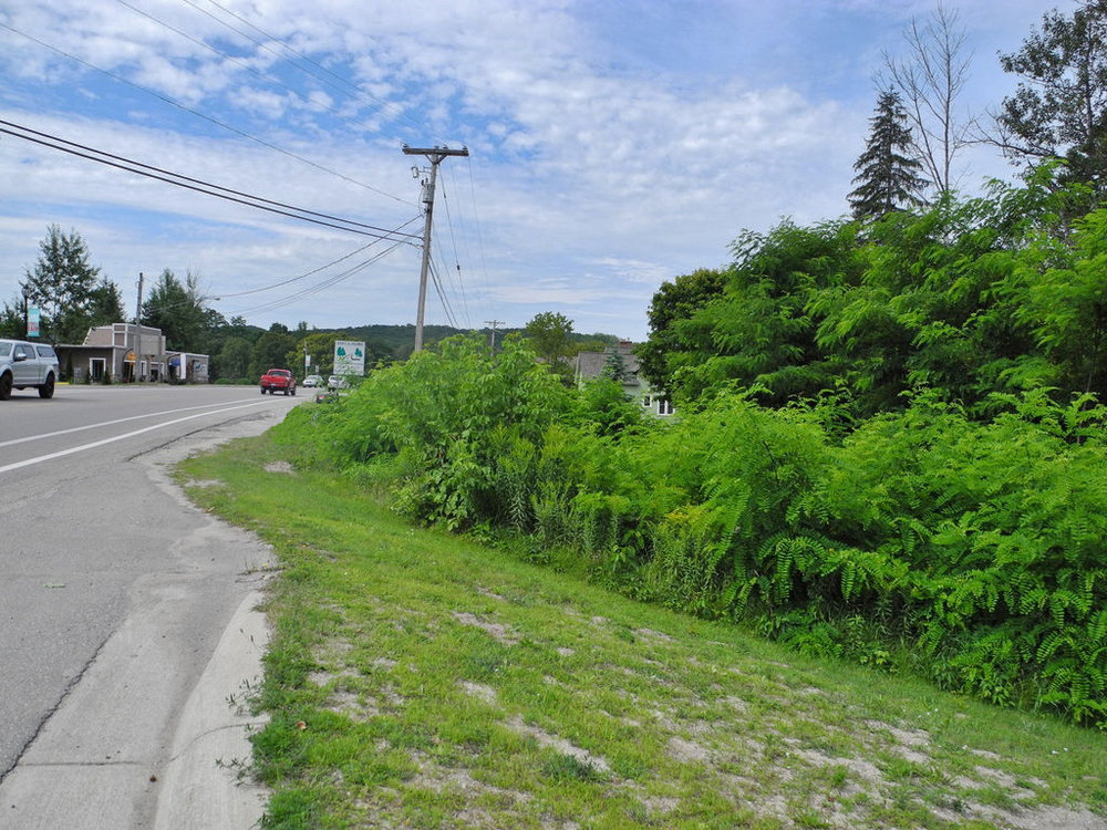 N Eagle Hwy, Lake Leelanau Commercial Vacant Parcel - For Sale by Oltersdorf Realty LLC (1).JPG