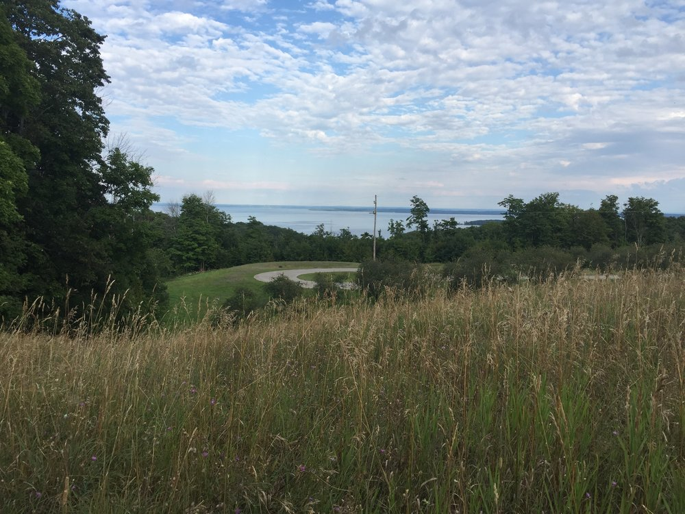 Lot 30 & Lot 31 – N Brencris Lane, Suttons Bay, MI – Water View Vacant Parcel - Sold by Oltersdorf Realty LLC (2).JPG