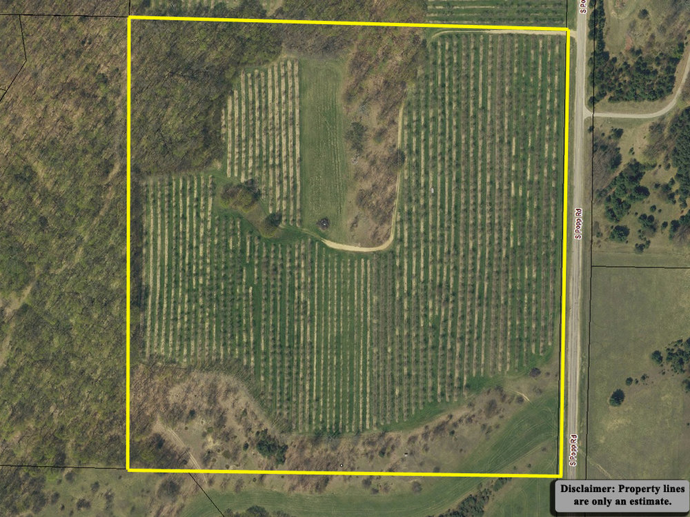 40 Acres for sale by Oltersdorf Realty LLC, Leelanau County Realtors - S Popp Road, Lake Leelanau (2).jpg