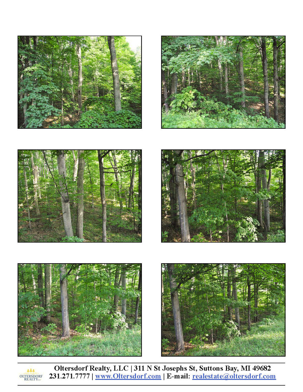 S Bay View Trail Lot 88, Suttons Bay - For Sale by Oltersdorf Realty LLC - Marketing Packet (2).jpg