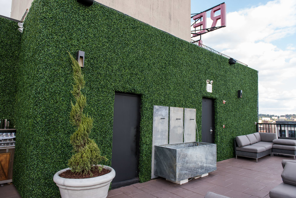 035Redmond_Roof.JPG