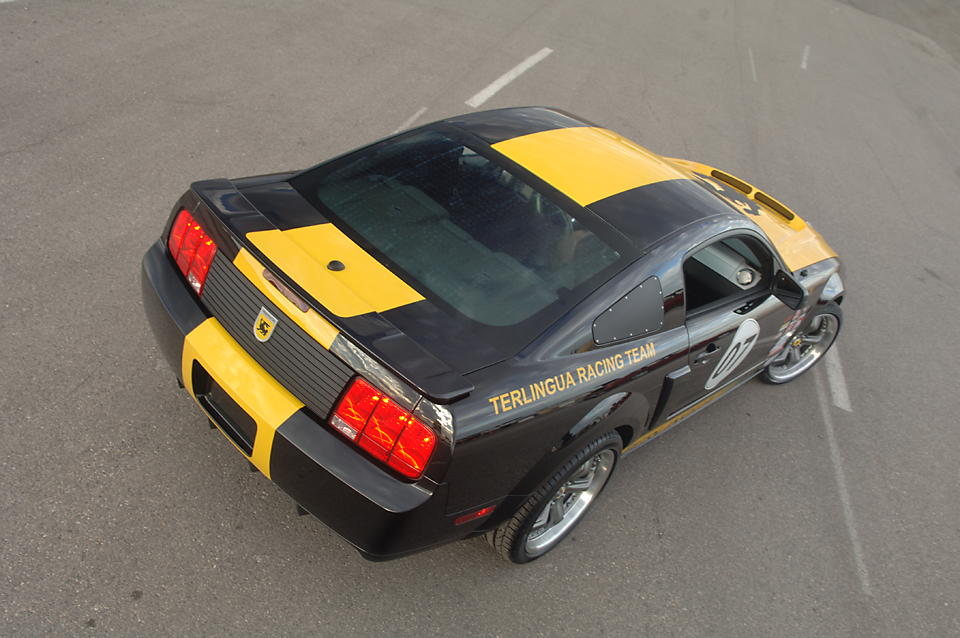 Mustang021.jpg