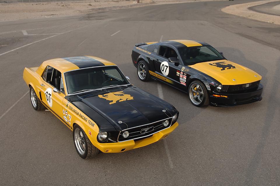 Mustang023.jpg