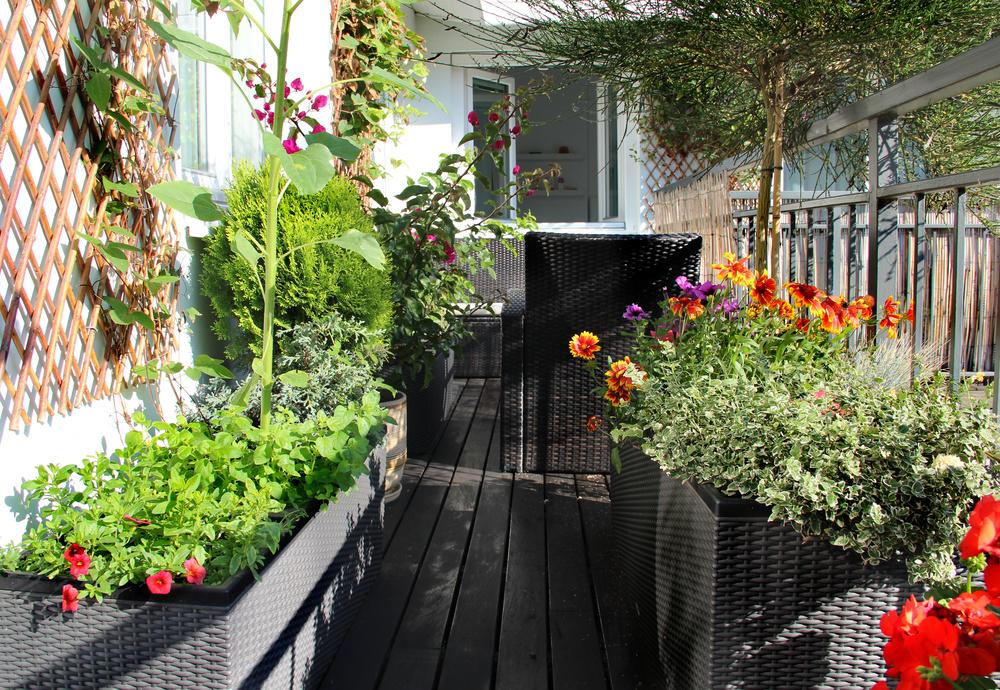 Porches and decks are a passion.