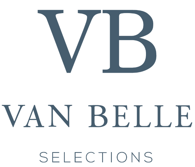 VBS_logo_02.png