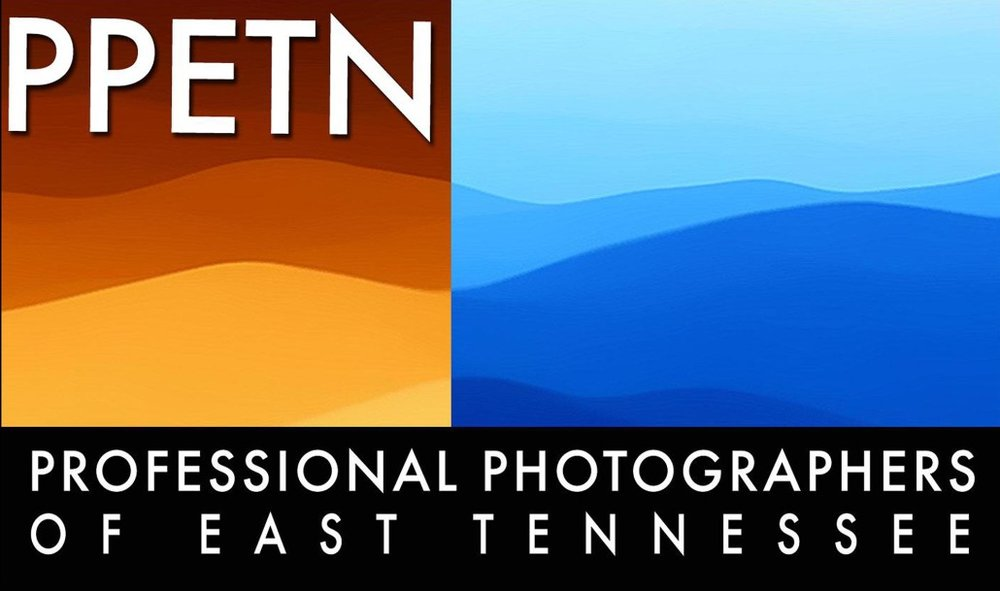 PPETN-logo_web-1030x609.jpg