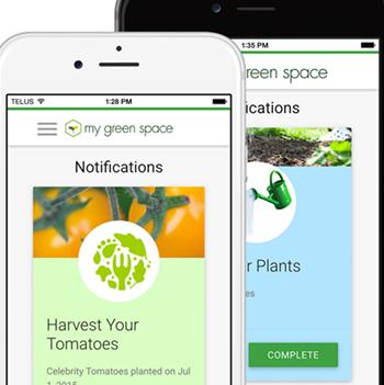 mygreenspace