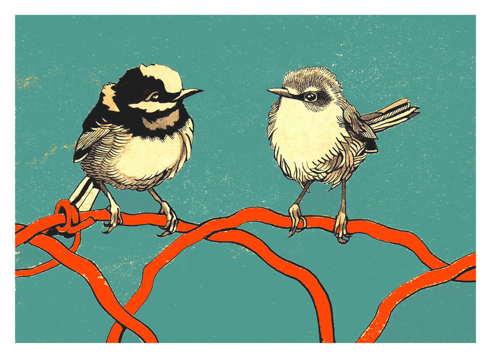 Renee Staeck,  Bird Couple