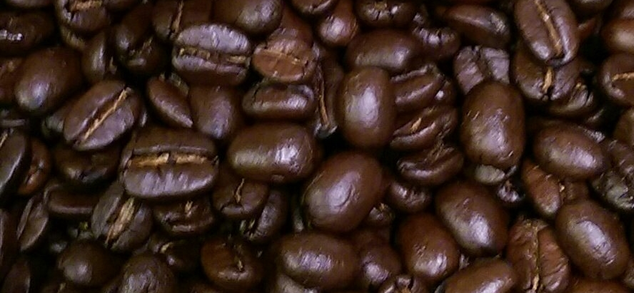 fresh coffee, roasted coffee, coffee close-up