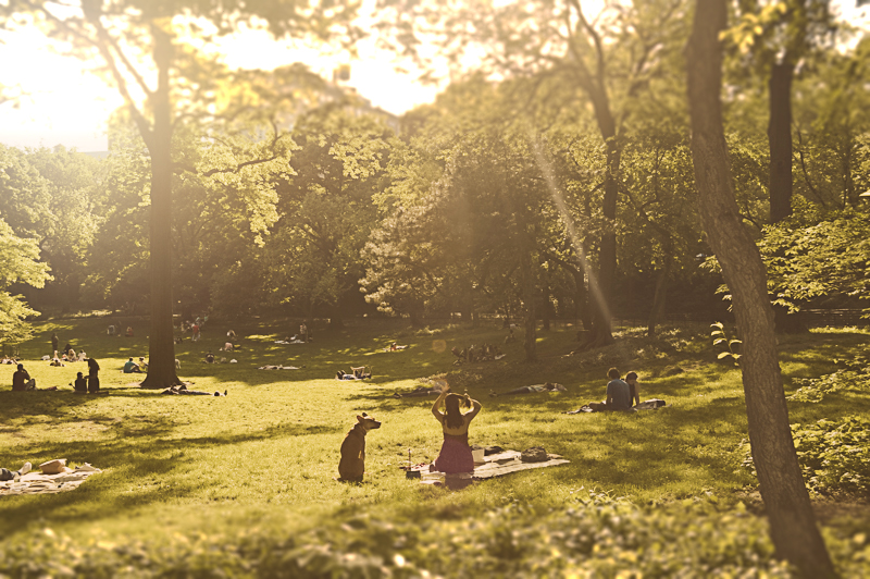 Central Park-1_Blurred.jpg
