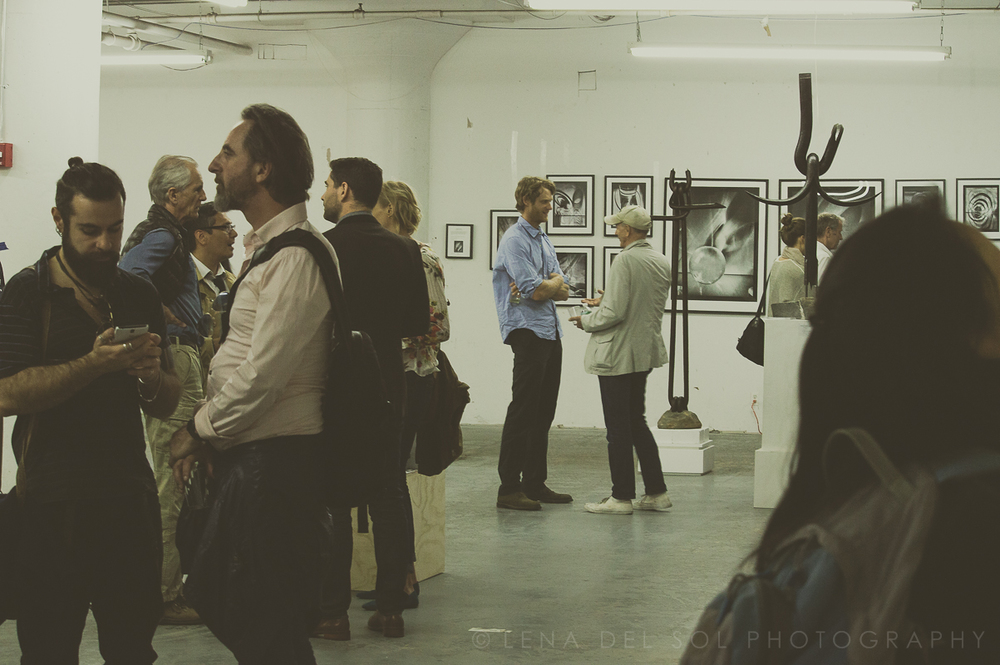 LIC Arts Open_exhibits 2015-1-13.jpg
