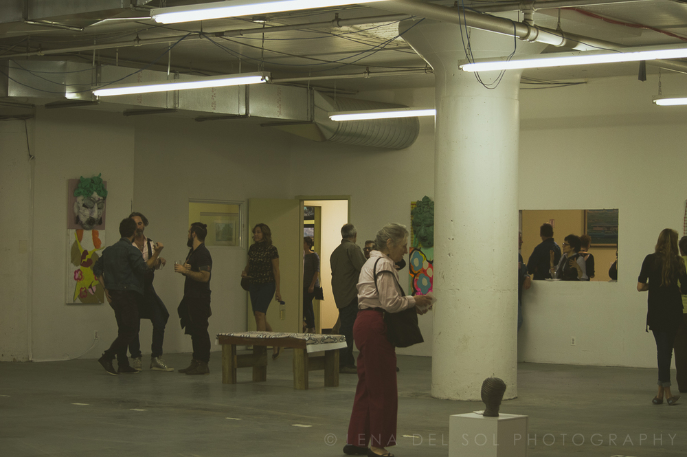 LIC Arts Open_exhibits 2015-1-15.jpg