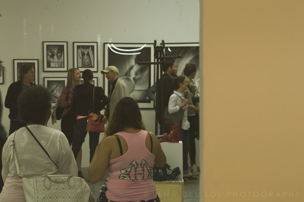 LIC Arts Open_exhibits 2015-1-18.jpg