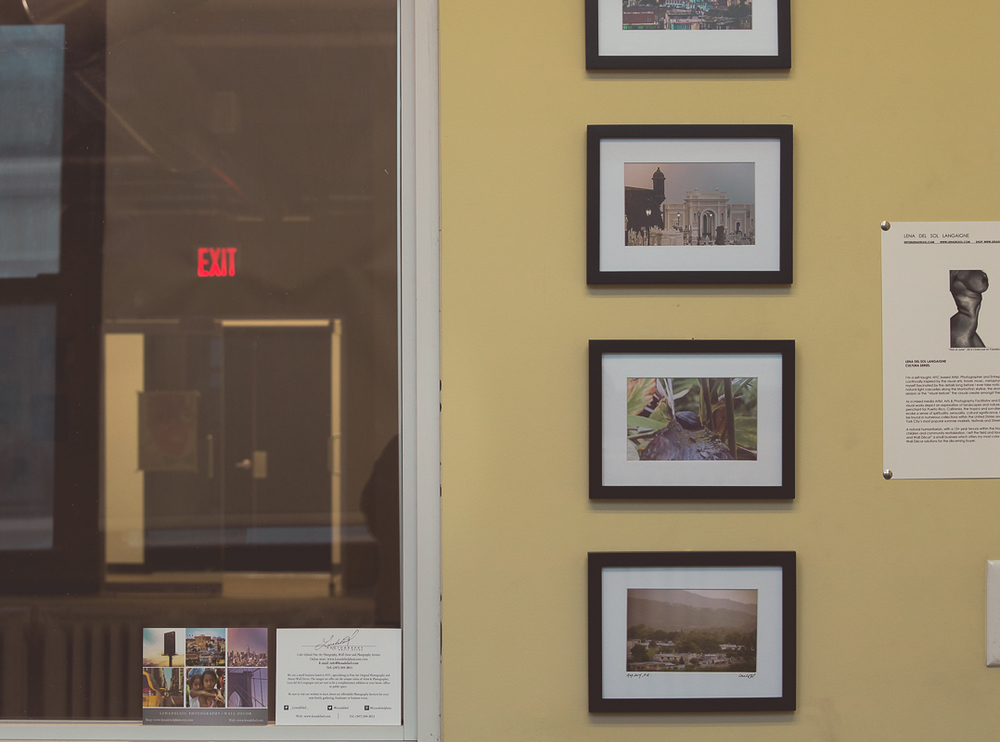 LIC Arts Open_exhibits 2015-1-5.jpg
