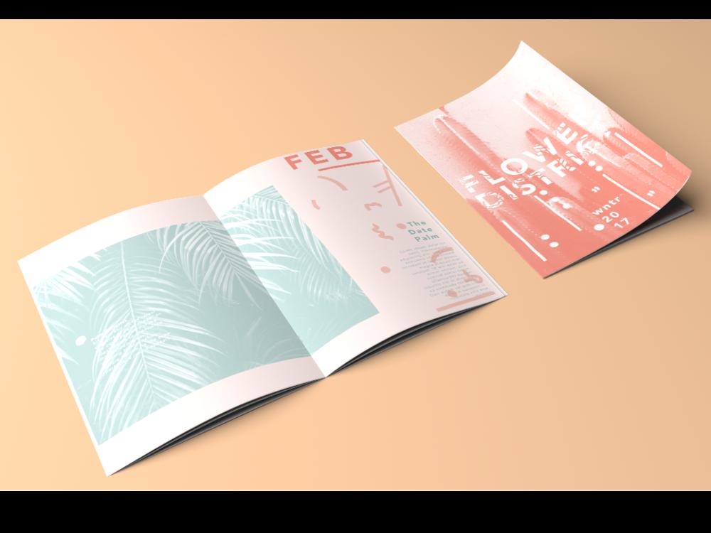 pamphlet.png