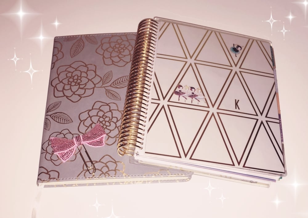 Left: Journal from Target // Right: Erin Condren Life Planner