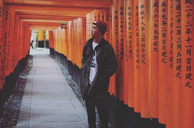 Missing Japan 🇯🇵 また日本に行きたい! #japan #travel #photography #sonya6000 #fushimiinari #arashiyama #narapark