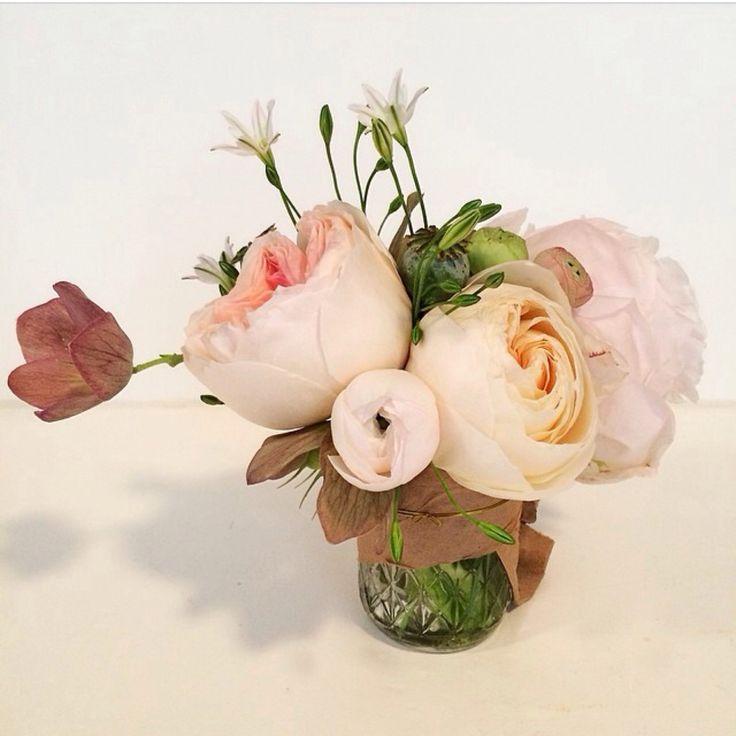 TTH Blooms