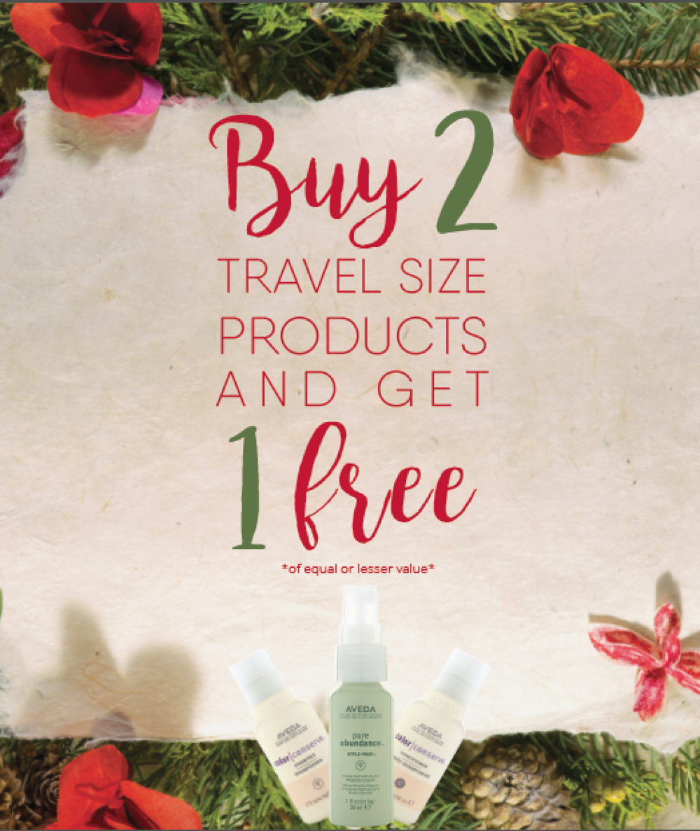 buy 2 get 1 aveda travel size products