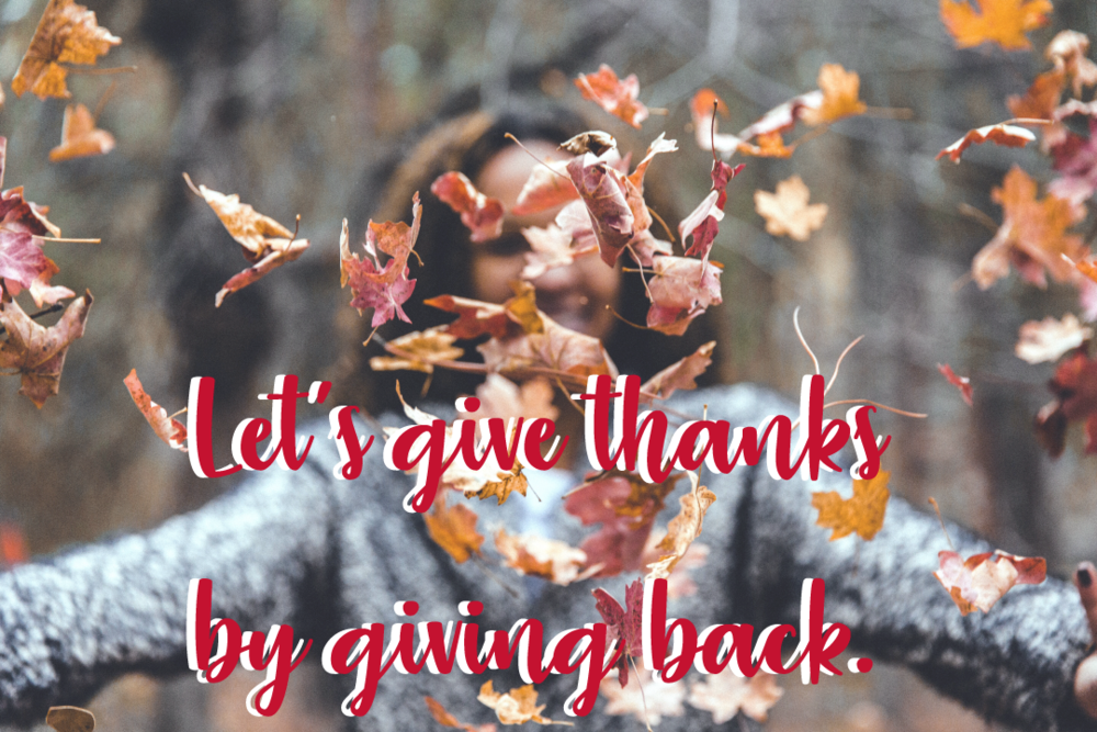 give-thanks-campaign.png