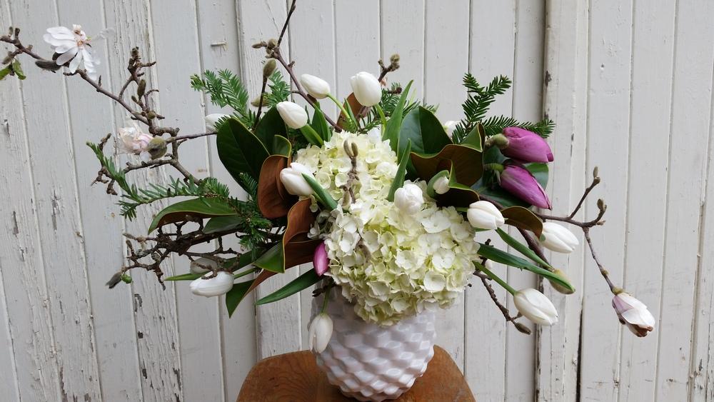 white tulips 3.jpg