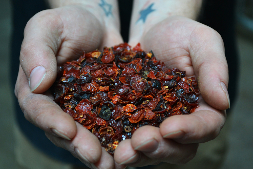 Brewer Rob Lemery uses rose hips for a limited edition recipe at Brooklyn Brewery.