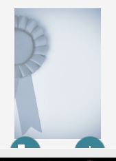 awards ribbon.png