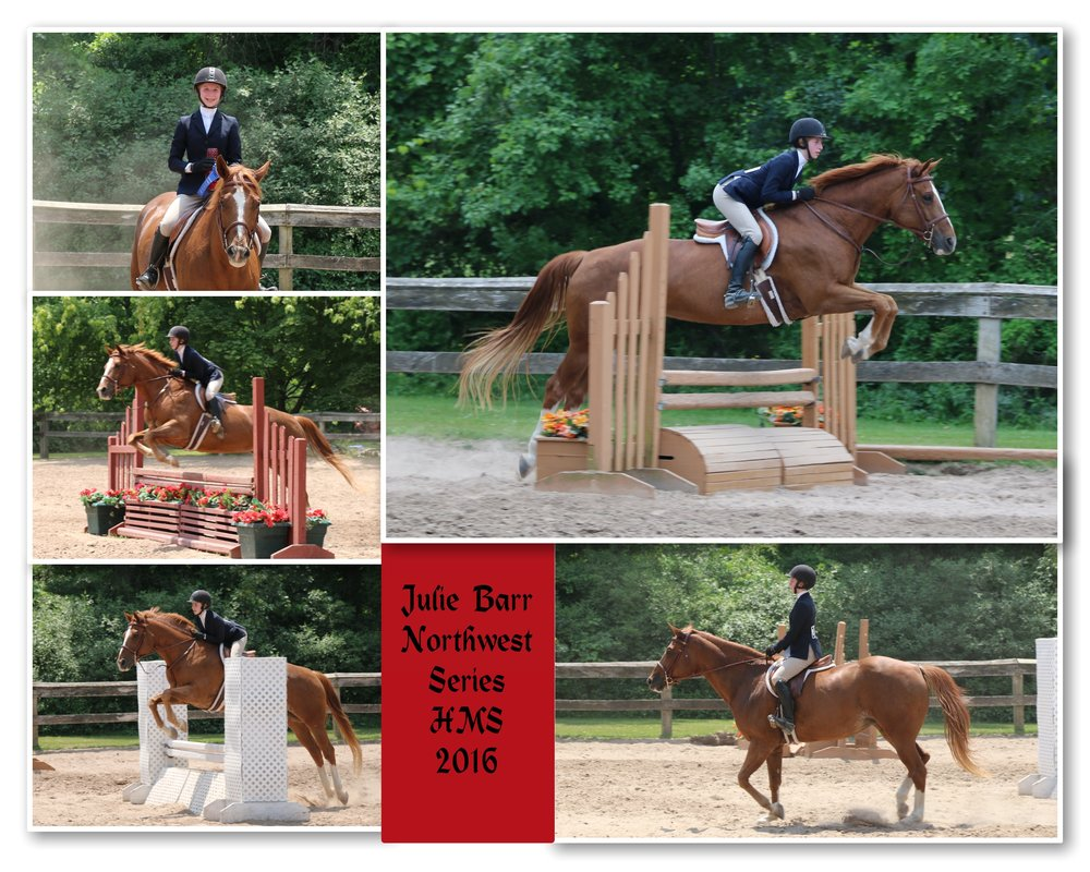 Julie nw hms 5 photo collage.jpg