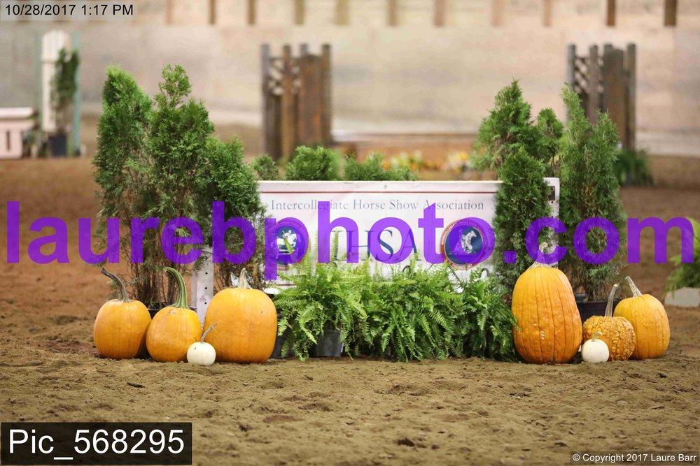 Pic_568295.jpg