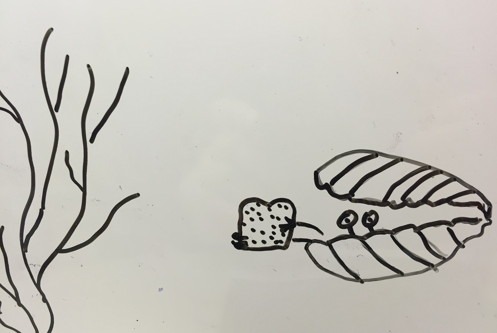 Clam eating Sandwich Dry erase board in my office