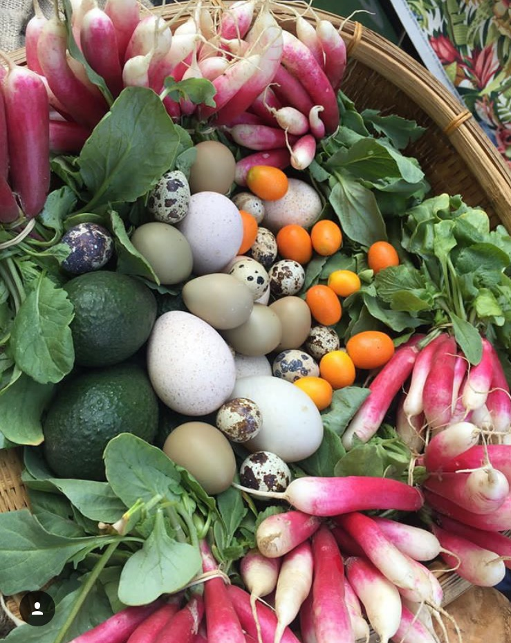 Chef Portillo is delighted to shop at the weekly local farmers market for you and your family! Please contact 562 241 2170 or email. produce@truenourishmentwellness.com